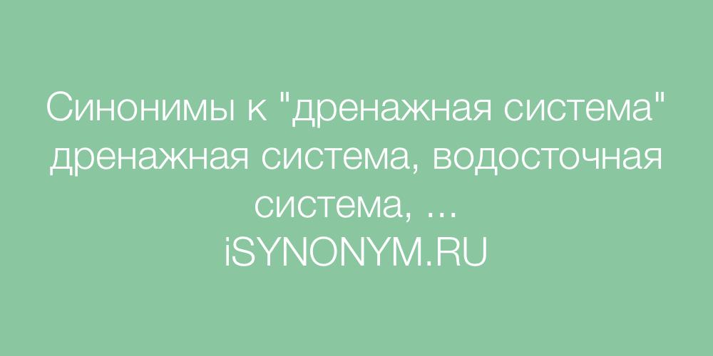 Синонимы слова дренажная система