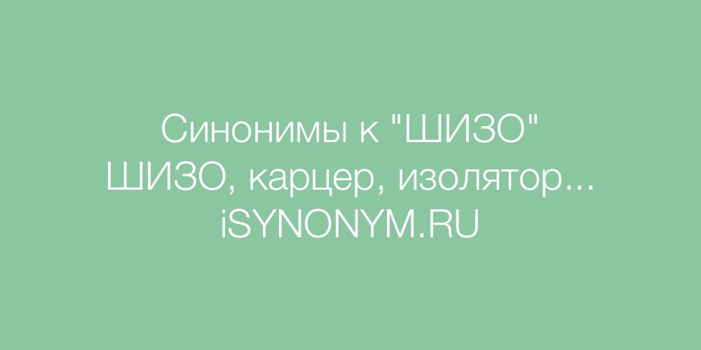 Синонимы слова ШИЗО