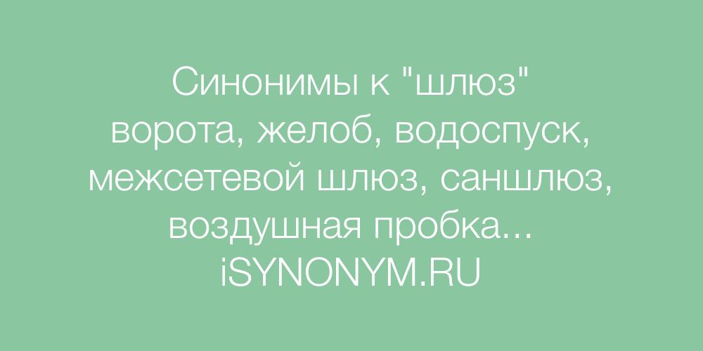 Синонимы слова шлюз