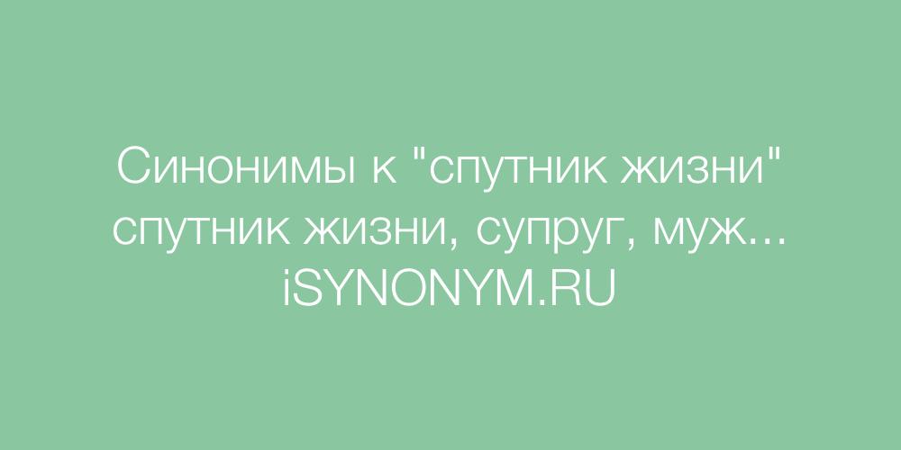 Синонимы слова спутник жизни