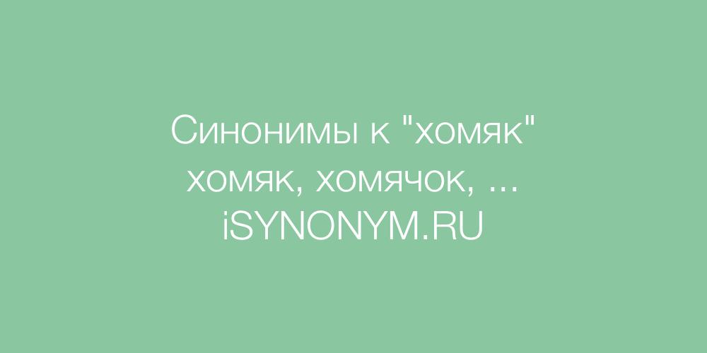 Синонимы слова хомяк