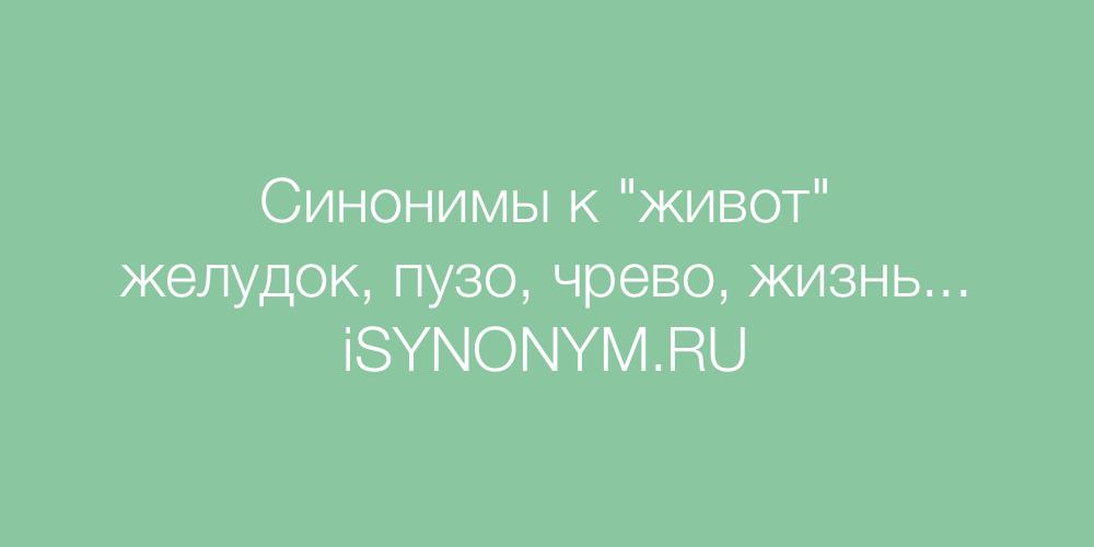 Синонимы слова живот