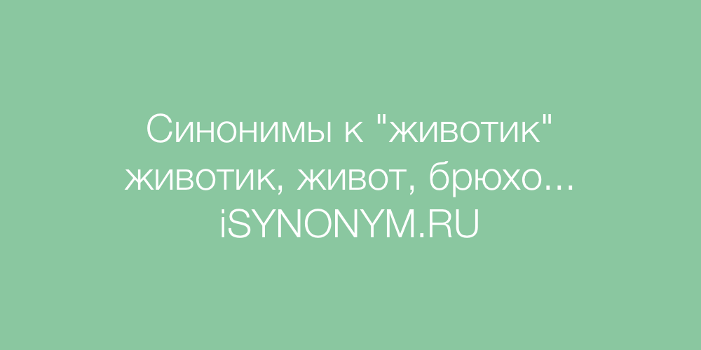 Синонимы слова животик